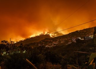 recent-northern-california-wildfire-out-of-control